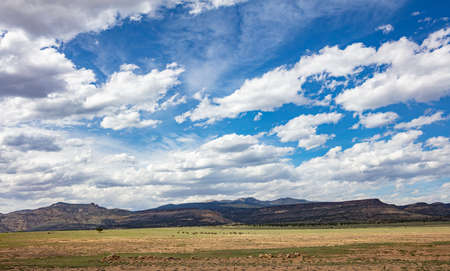 Desert landscape, US. Blue sky with clouds in a spring day