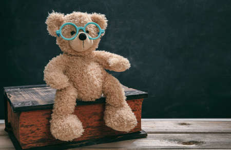 Back to school, knowledge concept. Smart kid, cute teddy wearing eyeglasses sitting on a big book in class against blackboard, copy space. Imagens