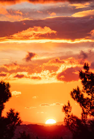 Sunset, sunrise colorful sky with clouds. Pine trees black silhouette against an orange color cloudy sky and sundown, wood forest landscape