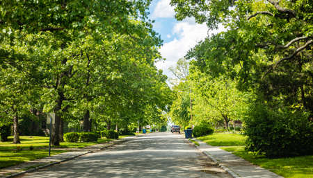 Parked cars on a peacefull empty street in a residential suburb, southwest USA. Green tree foliage and blue sky, springtime