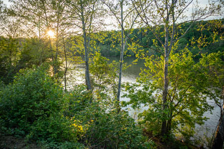 Sundown over the river behind green tree folliage in spring. A place for relaxation and activities. Pittsburgh, Pennsylvania, USA.