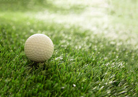 Golf ball on green course lawn, sunlight reflections, close up view. Golfing sport and club concept. Copy space, template