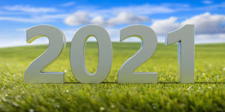 New year 2021 white digits number on fresh green lawn, blue cloudy sky background. Sunny day, freedom, travel concept. 3d illustration Zdjęcie Seryjne