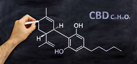 Cannabidiol, cbd structural chemical formula, drawing on a board, student room background. Cannabis medicine molecule