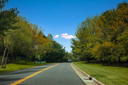 Road in a sunny spring day, USA countryside, passing through spring fresh foliage trees, Texas, Unired states America