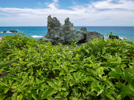 Travel photography - wild tropical coast next to Caracas, Venezuela.