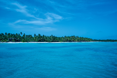 Tropical beach with white sand, crystalline water and palms in Saona island (Dominican Republic).