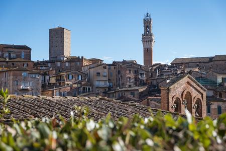 Travel photography - cityscape of Siena (Tuscany, Italy, Europe).