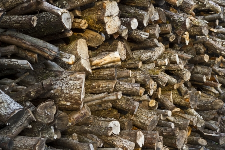 background with wooden logs photo