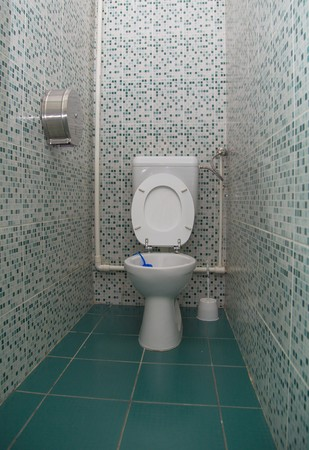 hygenic: Small white porcelain toilet with seats up.