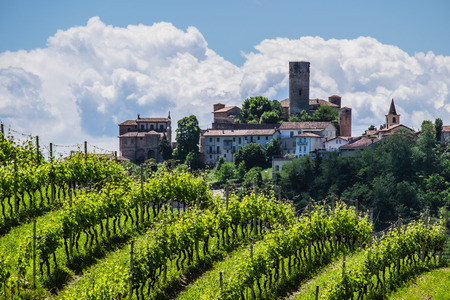 nebbiolo: Castiglione Falletto Castle through the vineyards of the Langhe