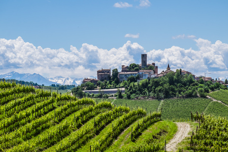 castillos: Castiglione Falletto Castillo a través de los viñedos de las Langhe