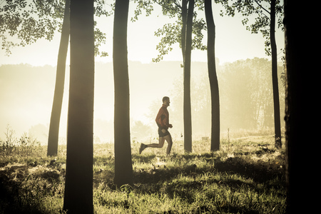 alone: Man running alone in a forest of tree at the sunrise Stock Photo