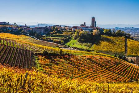 Langhe vineyards in autumn Archivio Fotografico