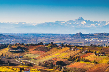Langhe vineyards in autumn Stock Photo