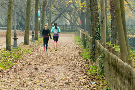 leg muscle fiber: Women jogging in park in autumn. Health and fitness