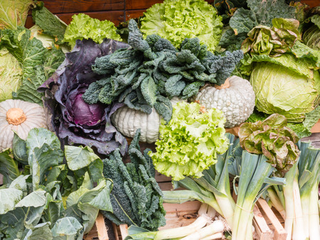 Mixed Fresh green leaf vegetables and other plants
