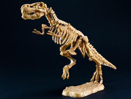 t rex: dinosaurus Tyrannosaurus Rex T beeldje skelet op zwarte achtergrond, t-rex speelgoed