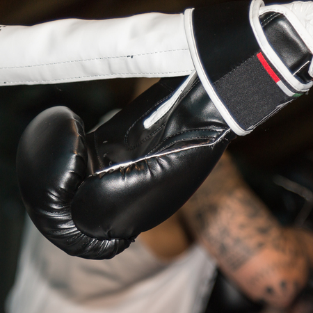 pugilist: Black Boxing Glove Linked to Ring Ropes and Boxers Tatooed Arm in background Stock Photo