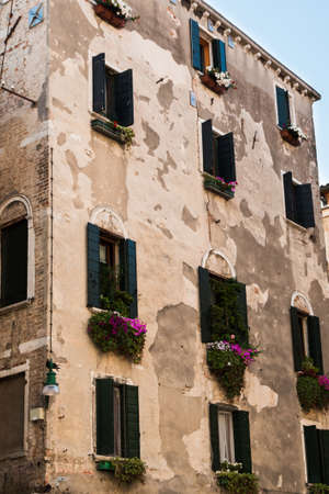 windowpane: Old Facade in Venice with green vegetation and flowers under some windowpane