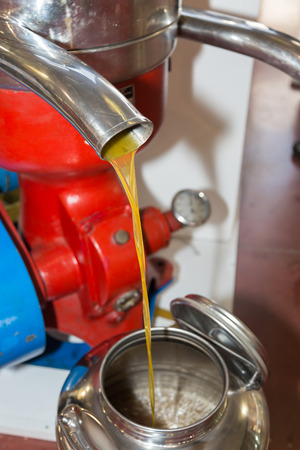 Flowing Oil from Steel Pipe: Closeup View of Olive Oil Mill.