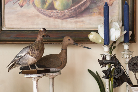 Stuffed Birds displayed on the Windowsill of a House.