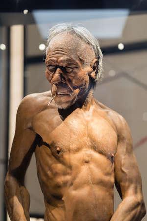 Reconstruction of the Head of Homo Erectus Adult Man.