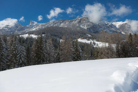 Beautiful Day in the Mountains with Snow-covered Fir Trees and a Snowy Mountain Panorama. Imagens