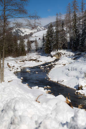 Mountains with Snow-covered Fir Trees, and Creek of Frozen Water.