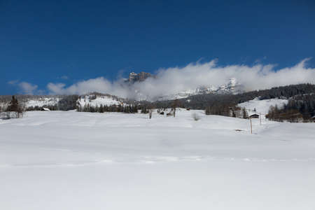 Beautiful Day in the Mountains with Snow-covered Fir Trees and a Snowy Mountain Panorama. Фото со стока