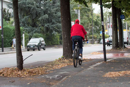 Person Seen from Behind on a Bicycle along a Cycle Path in Autumn with Yellow leaves on the Ground.