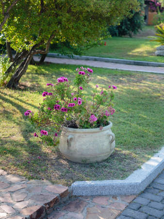 Antique Decorative Vase in Stone inside Park with Violet Flowers.