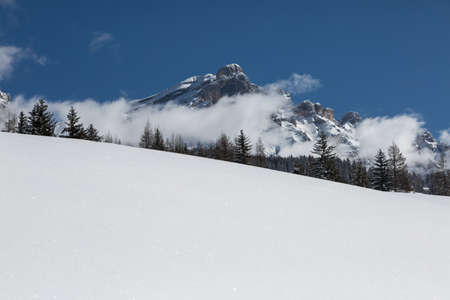 Beautiful Day in the Mountains with Snow-covered Fir Trees and a Snowy Mountain Panorama. Banco de Imagens