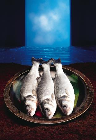 fingerling: bass fish