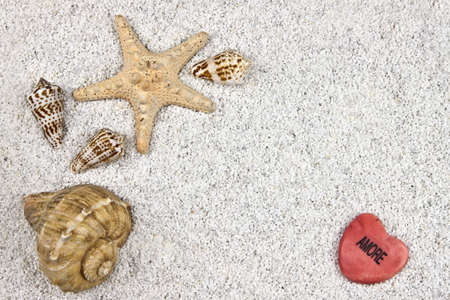 a seastar and several shells in white sand with a heart