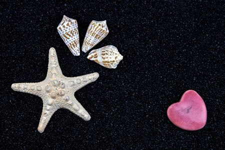 a white starfish, seashells and a heart on black sand Stock Photo - 9596043