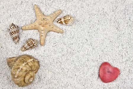 a seastar and several shells in white sand with a heart Stock Photo - 9749662