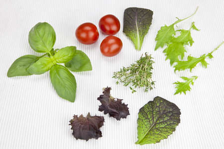 mustard plant: variety of lettuces and herbs with tomatoes on a white mat Stock Photo