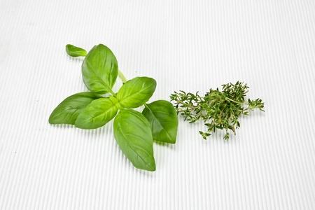 fresh basil leaves and fresh thyme on a white mat