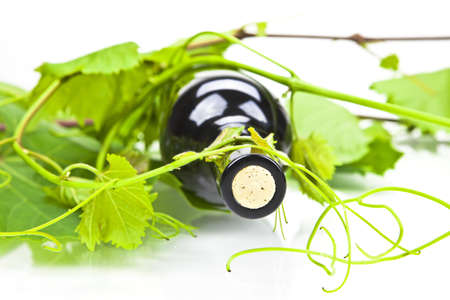 A bottle of red wine with leaves and tendrils photo