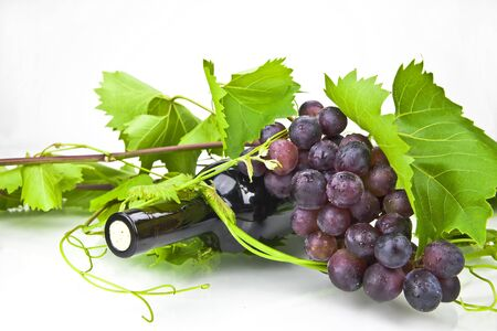 A bottle of red wine with leaves and tendrils Stock Photo