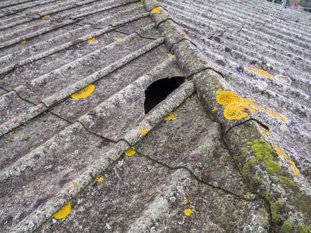 Tetto coperto di pannelli di amianto e cemento Archivio Fotografico - 24755035