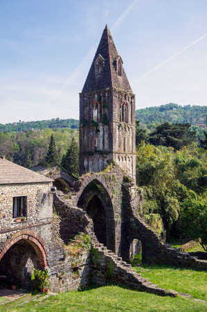 desecrated: ruins of an old abbey suspended in time