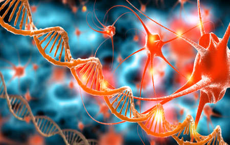 Active nerve cells and DNA Stock Photo