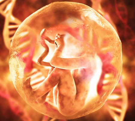 Human Fetus and Dna Medical concept Graphic and Scientific Background Banco de Imagens