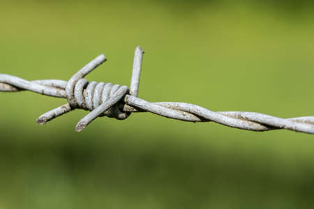 A close up picture of a piece of barbwire perfectly as backround photo
