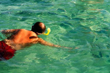 snorkling:        Snorkling                         Stock Photo