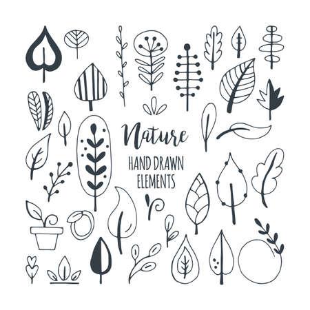 Foglie e la natura mano elementi verdi disegnati per la progettazione grafica e web
