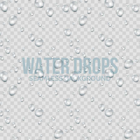 Water drops transparent seamless background. Realistic vector illustration