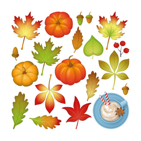 Autumn season set with fall leaves and pumpkin latte cup isolated on white background. Vector illustration